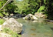 大自然の中で川遊びも楽しめます!