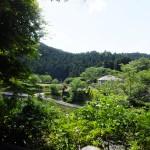 西吾野駅 上からの景色