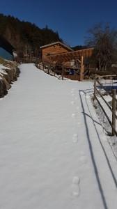 2016 雪の坂